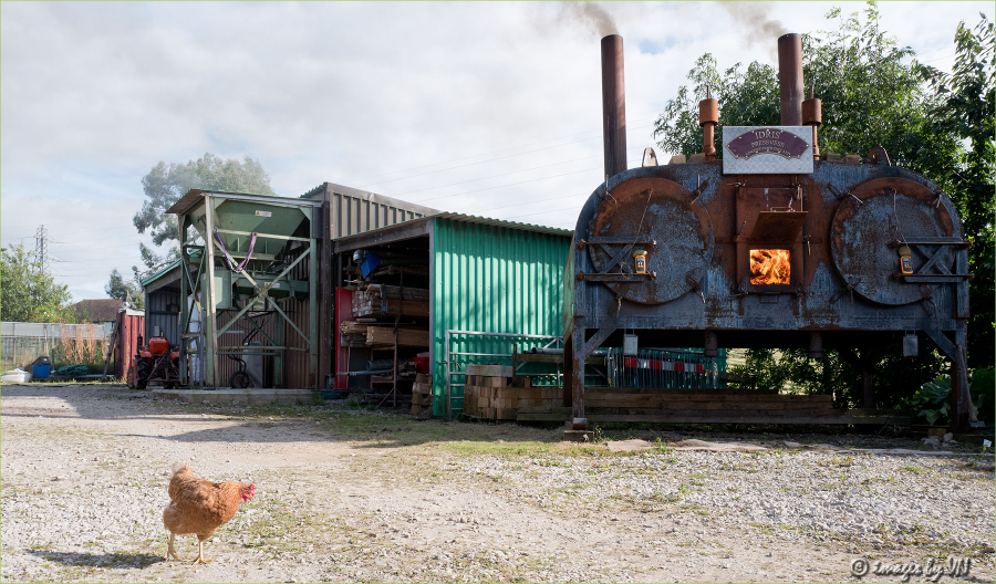 The Great Welsh Charcoal Company - North Wales